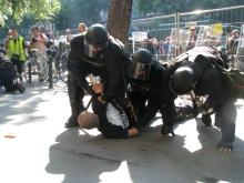 Cops arrest protestor for assaulting parade (2008).