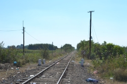 The last gap in the fence: railway track at the Hungarian-Serbian border.