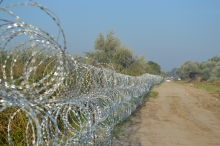 Razor-wire fence along the Hungarian-Serbian border.