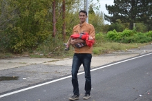 Migrant carries child on his way into Austria from Hungay.