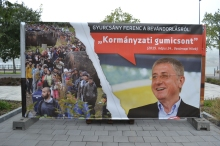 """Democratic Coalition President Ferenc Gyurcsány: """"Government red herring."""""""