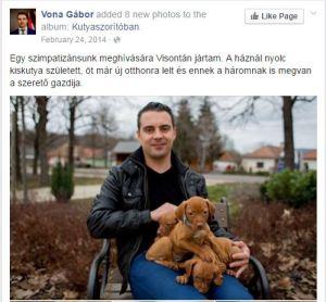 Vona Dogs