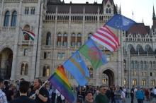 Demonstrator at Hungarian Parliament Building